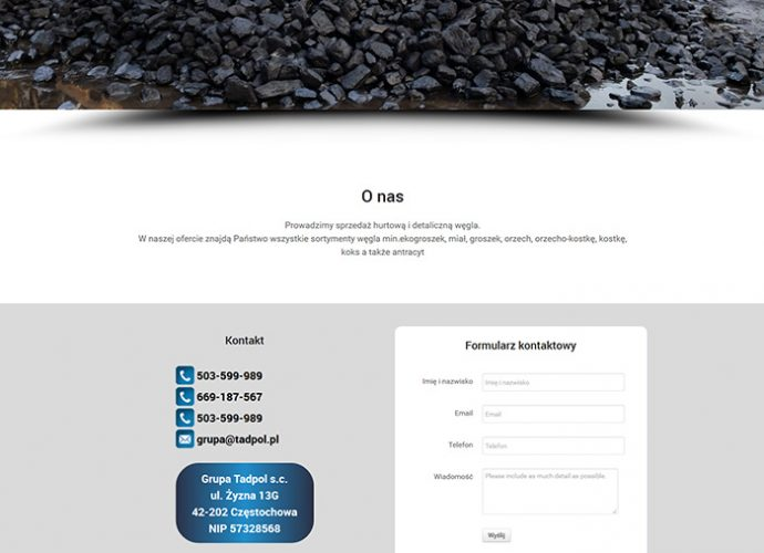strona www Grupa Tadpol