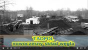 spot reklamowy Tadpol
